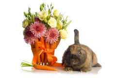 Rabbit  with flower decoration Royalty Free Stock Images