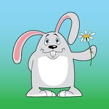 Rabbit. With flower,  funny hare, , smiling Stock Photo