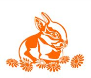 Rabbit and flowers. Orange graphic silhouette of the rabbit and camomiles on a white background Stock Photo