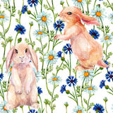 Rabbit among flowers. Watercolor seamless pattern Royalty Free Stock Photos