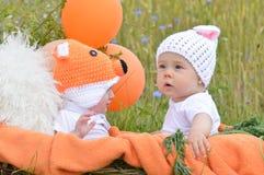 Rabbit fox baby Royalty Free Stock Photo