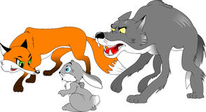 Rabbit, fox and wolf Royalty Free Stock Image