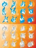 Rabbit fright animal bunny eye fear ears Royalty Free Stock Photo