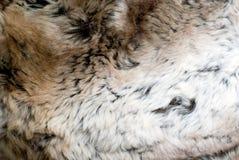 Rabbit fur. Texture of close-up Royalty Free Stock Photos