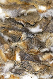 Rabbit fur Royalty Free Stock Images