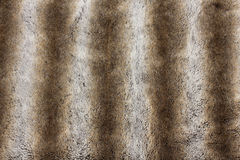 Rabbit fur background Stock Image