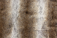 Rabbit fur background - close up Royalty Free Stock Photo