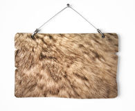 Rabbit fur notice board Royalty Free Stock Photos