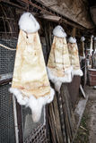 Rabbit furs hanging on the hooks in the farm, rural scene. Rabbit furs hanging on the hooks in the farm. Stretched skin. Vertical composition. Rural scene Royalty Free Stock Photo