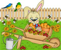 Rabbit in the garden Royalty Free Stock Image
