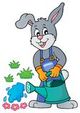 Rabbit gardener theme image 3 Stock Photography
