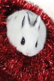 Rabbit with  garland Stock Image