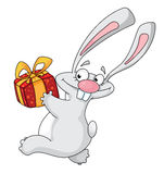 Rabbit with gift box Royalty Free Stock Photo