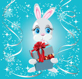 Rabbit with gift box Stock Photography