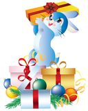 Rabbit with gifts. Stock Photos