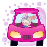 Rabbit girl in a car Stock Photos