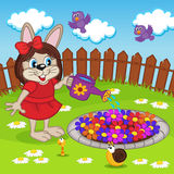 Rabbit girl watering flowers in flowerbed Stock Photos