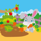 Rabbit Gnawing Carrot In Garden stock illustration