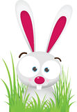 Rabbit on the Grass. Illustration Cartoon of Rabbit with big Eye sit on the Grass Stock Photo