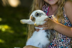 Rabbit in Green Grass with small child and rabbits in the backgr Royalty Free Stock Photography