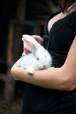 Rabbit in the hands of the girl Royalty Free Stock Image