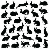 Rabbit and Hare. Collection -  silhouette Stock Image