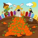 Rabbit harvesting carrot Royalty Free Stock Photography