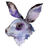 Rabbit head farm animal isolated. Watercolor background illustration set. Isolated rabbit illustration element.
