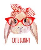 Rabbit head in glasses royalty free illustration