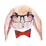 Rabbit head in glasses. Watercolor bunny  on white background. Hand drawn portrait of hare hipster Stock Photography