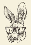 Rabbit head hipster glasses hand drawn sketch Stock Image