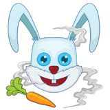 Rabbit head Royalty Free Stock Image