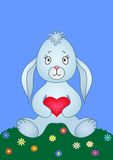 Rabbit with heart on a meadow Stock Image