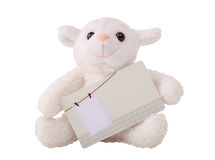 Rabbit holding blank card Royalty Free Stock Photo
