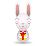 Rabbit holds packed gift Royalty Free Stock Images