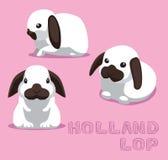 Rabbit Holland Lop Cartoon Vector Illustration Stock Image