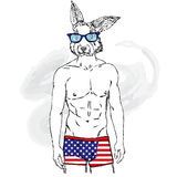 Rabbit with the human body in his underpants. Vector illustration for greeting card, poster, or print on clothes. Fashion & Style. Royalty Free Stock Images