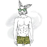 Rabbit with the human body in his underpants. Vector illustration for greeting card, poster, or print on clothes. Fashion & Style. Stock Photography
