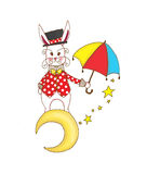 Rabbit the illusionist Royalty Free Stock Image