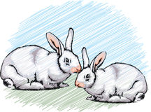 Rabbit illustration Stock Images