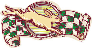 Rabbit Jumping Racing Flag Drawing Royalty Free Stock Image