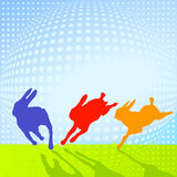 The rabbit jumps Royalty Free Stock Photo