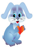 Rabbit keeps heart Stock Photos