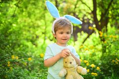Rabbit kid with bunny ears. Hare toy. Little boy child in green forest. Egg hunt on spring holiday. love easter. Family. Holiday. Happy easter. Childhood. Ready stock images