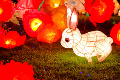 Rabbit lantern Stock Photos