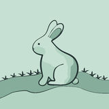 Rabbit on the lawn. Royalty Free Stock Photo