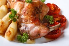 Rabbit leg roasted with apples and tomatoes on a plate macro Stock Photos