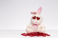 Rabbit in Love. A funny white rabbit in love, red hearts Stock Photo