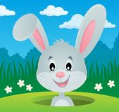 Rabbit lurking from hole image 2. Eps10 vector illustration Stock Photography
