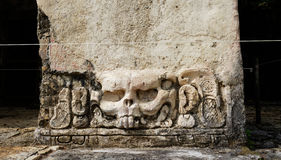 Rabbit by Maya at Palenque archaeological site. So-called rabbit engraving in Palenque archaeological site, one of the biggest for ancient Maya royalty free stock photo